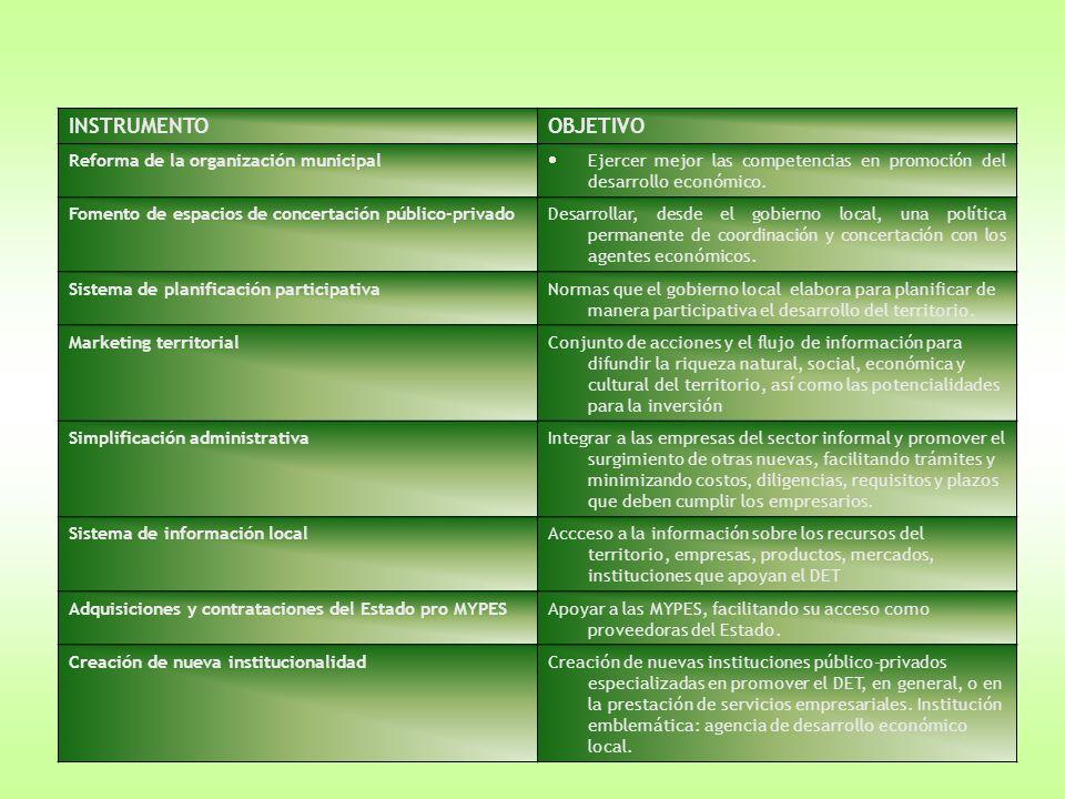 INSTRUMENTO OBJETIVO Reforma de la organización municipal