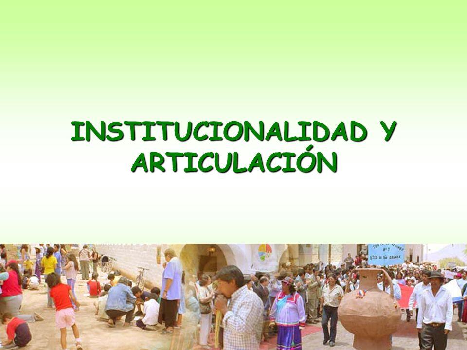 INSTITUCIONALIDAD Y ARTICULACIÓN