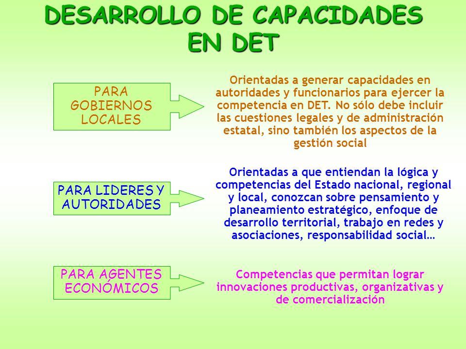 DESARROLLO DE CAPACIDADES EN DET