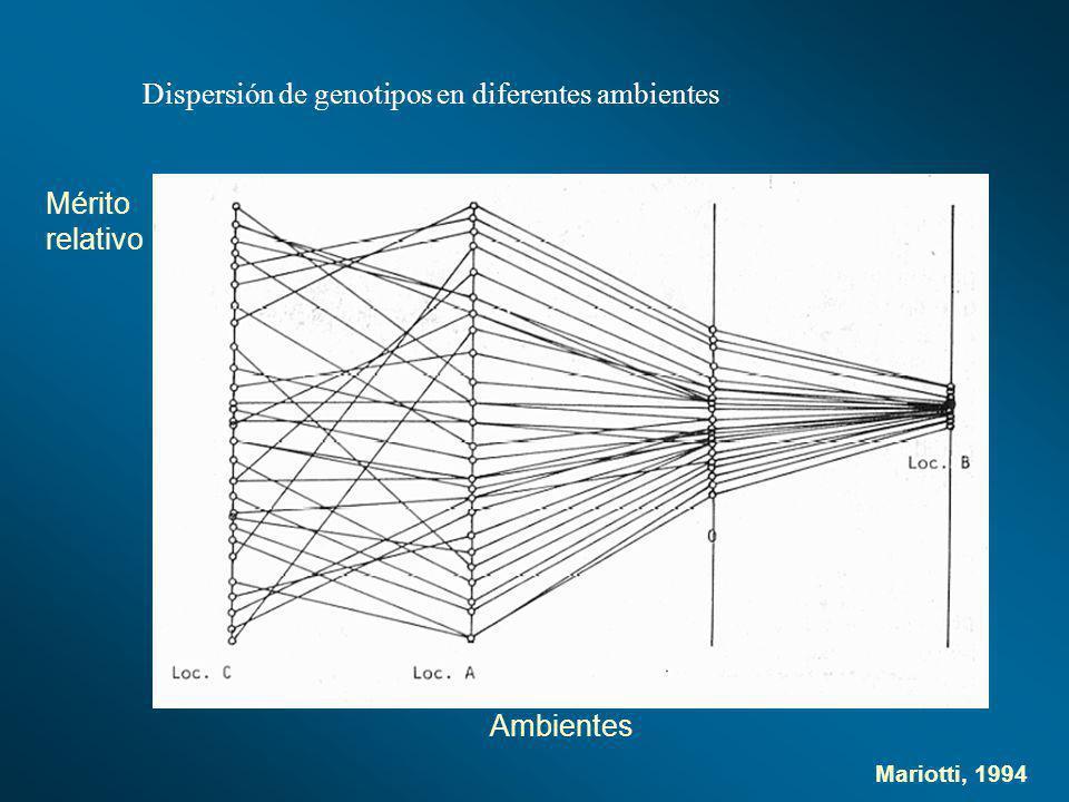 Mariotti, 1994 Dispersión de genotipos en diferentes ambientes Mérito