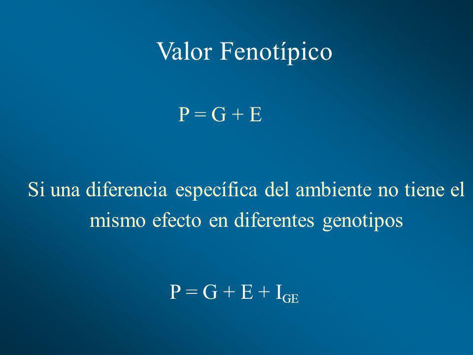 Valor Fenotípico P = G + E