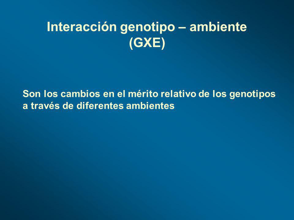 Interacción genotipo – ambiente (GXE)