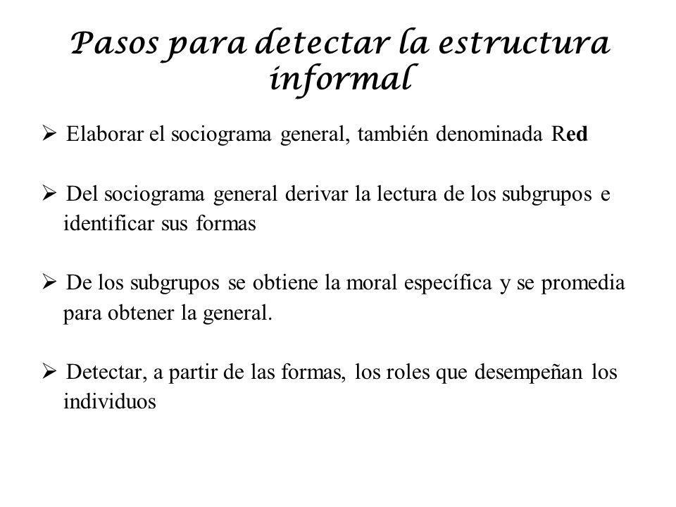 Pasos para detectar la estructura informal