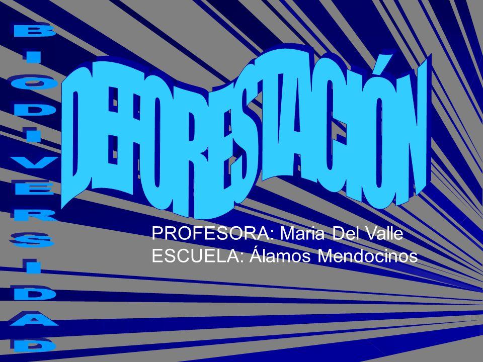 DEFORESTACIÓN BIODIVERSIDAD PROFESORA: Maria Del Valle