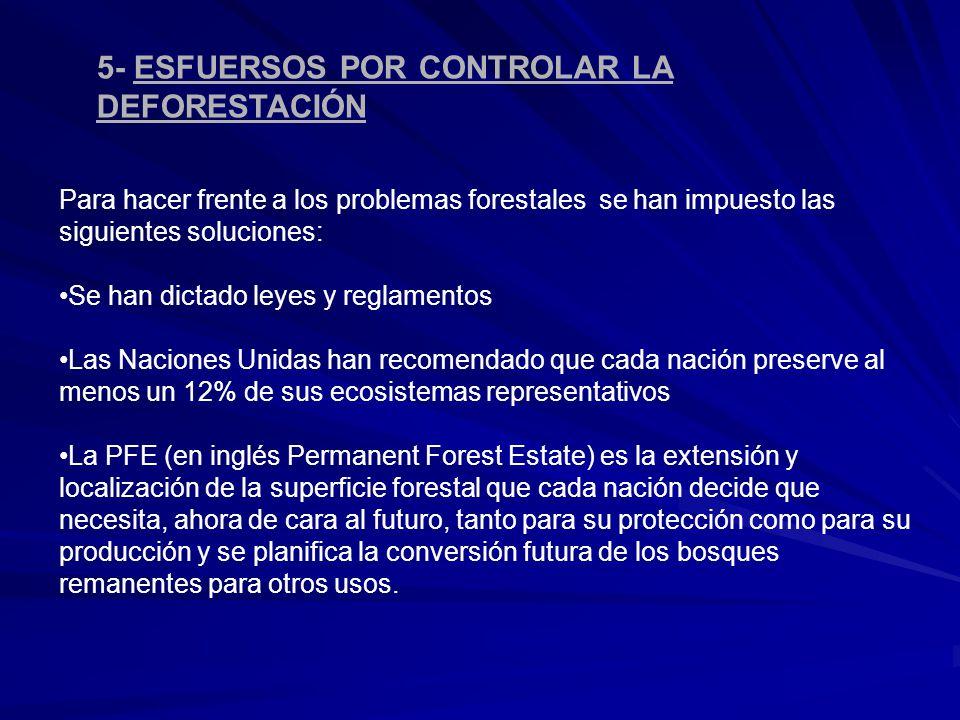 5- ESFUERSOS POR CONTROLAR LA DEFORESTACIÓN