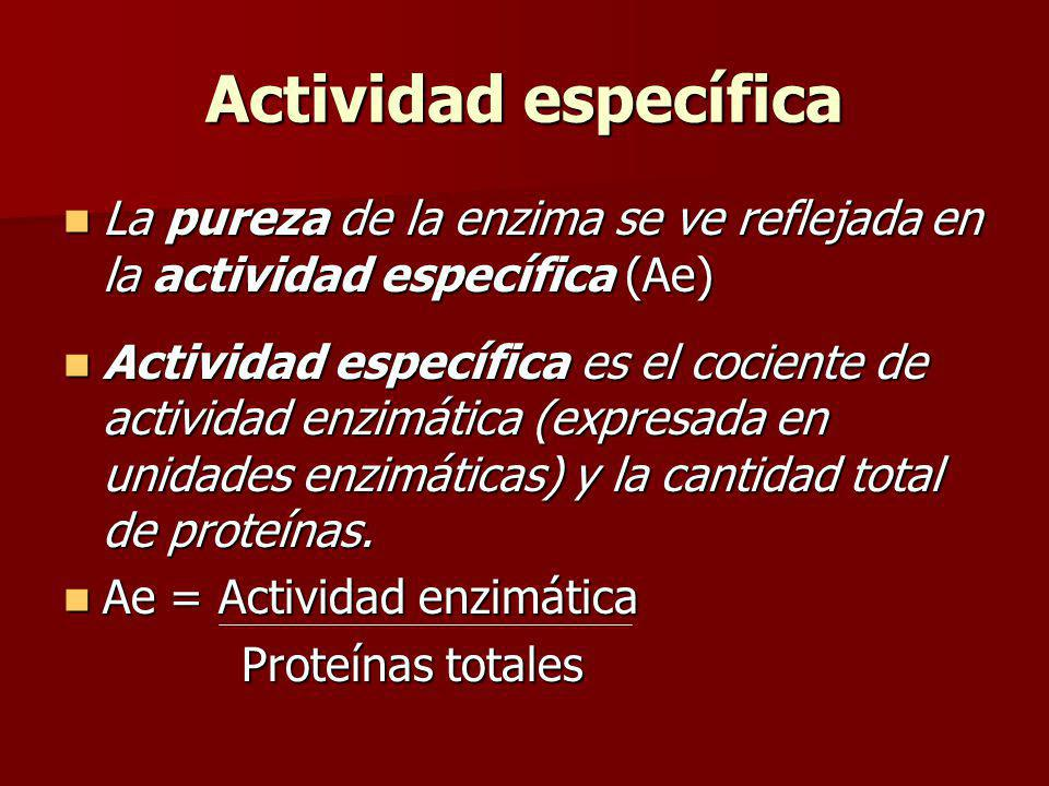 Actividad específica La pureza de la enzima se ve reflejada en la actividad específica (Ae)