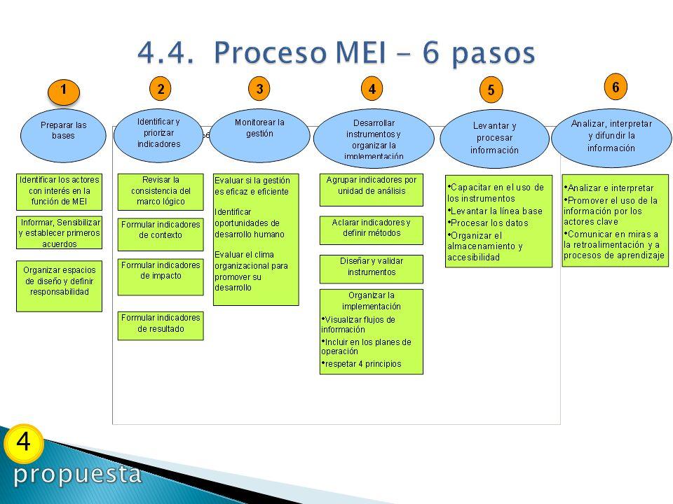 4.4. Proceso MEI - 6 pasos 4 propuesta