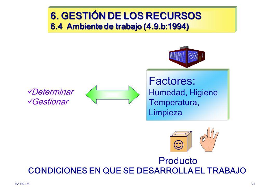 6. GESTIÓN DE LOS RECURSOS 6.4 Ambiente de trabajo (4.9.b:1994)