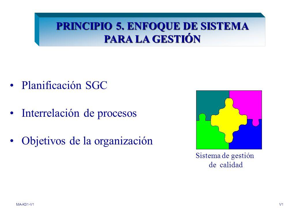 PRINCIPIO 5. ENFOQUE DE SISTEMA