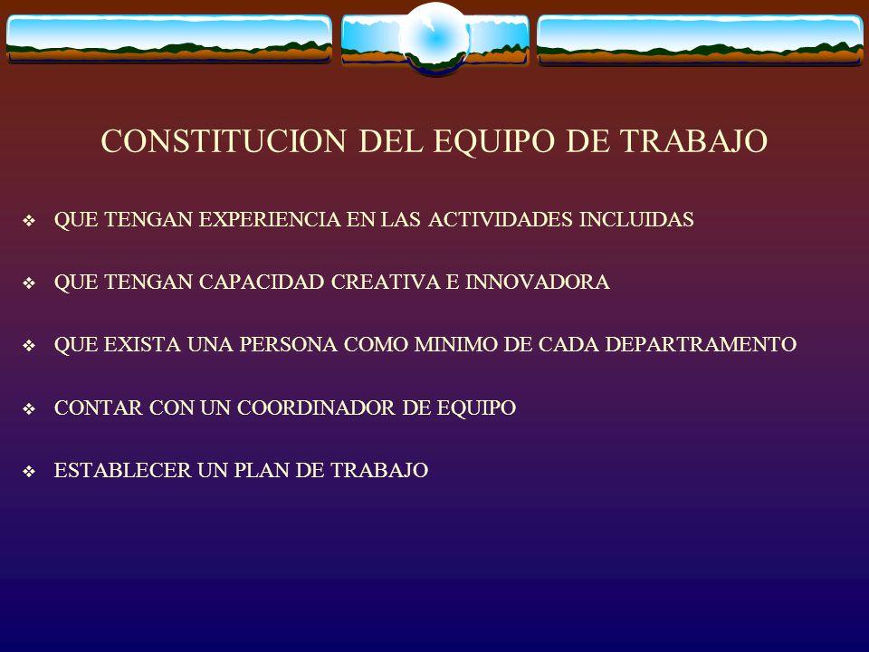 CONSTITUCION DEL EQUIPO DE TRABAJO