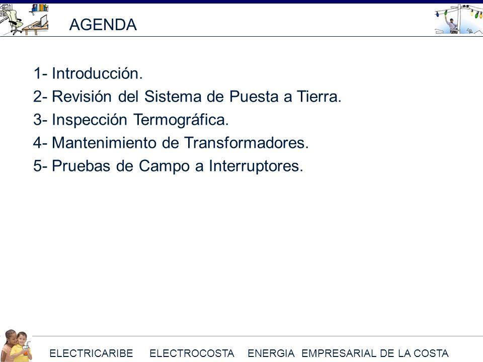 AGENDA 1- Introducción. 2- Revisión del Sistema de Puesta a Tierra. 3- Inspección Termográfica. 4- Mantenimiento de Transformadores.