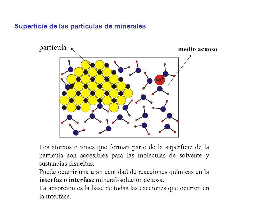partícula Superficie de las partículas de minerales medio acuoso