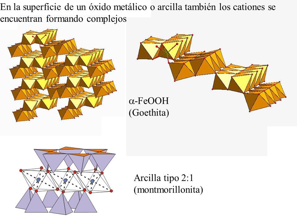 En la superficie de un óxido metálico o arcilla también los cationes se encuentran formando complejos