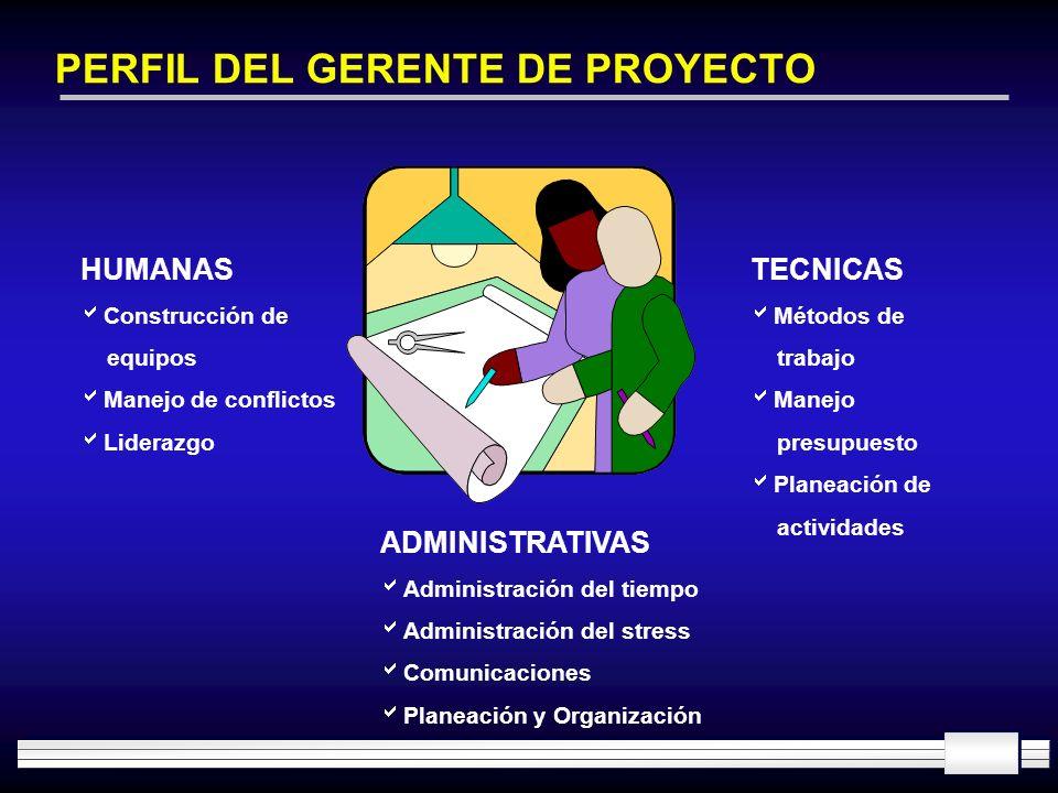 PERFIL DEL GERENTE DE PROYECTO