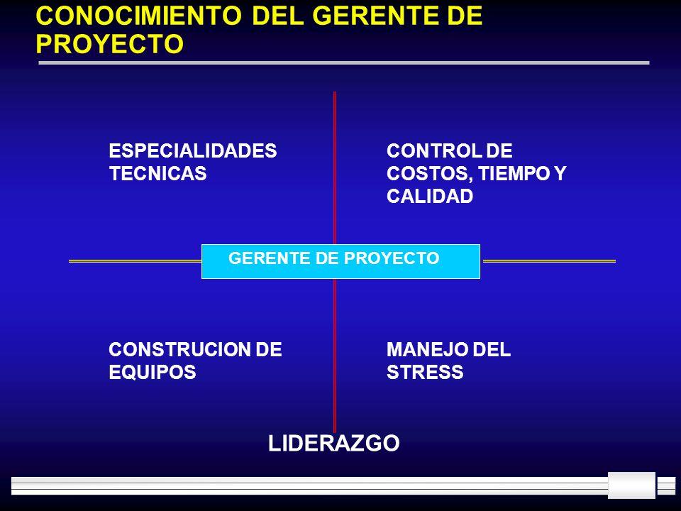 CONOCIMIENTO DEL GERENTE DE PROYECTO