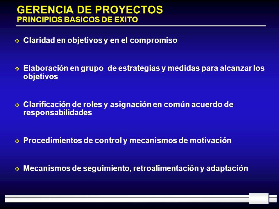 GERENCIA DE PROYECTOS PRINCIPIOS BASICOS DE EXITO