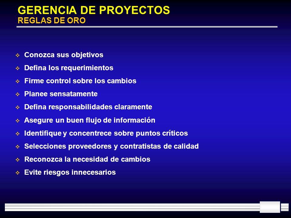 GERENCIA DE PROYECTOS REGLAS DE ORO
