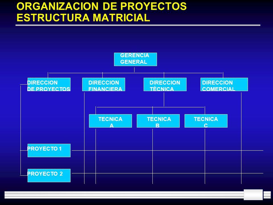 ORGANIZACION DE PROYECTOS ESTRUCTURA MATRICIAL