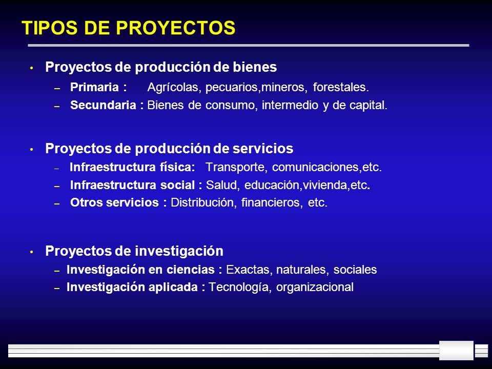 TIPOS DE PROYECTOS Proyectos de producción de bienes