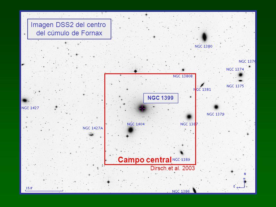Campo central Imagen DSS2 del centro del cúmulo de Fornax