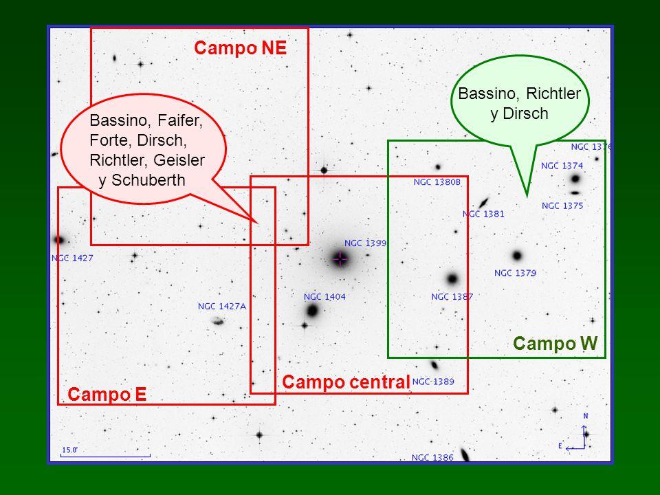 Campo NE Campo W Campo central Campo E Bassino, Richtler y Dirsch