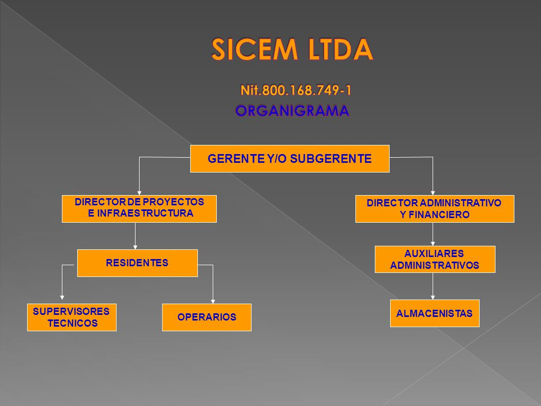 SICEM LTDA Nit.800.168.749-1 ORGANIGRAMA