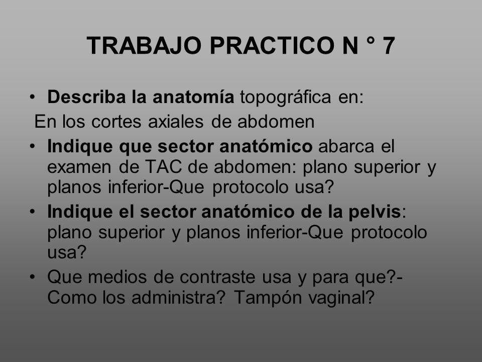 TRABAJO PRACTICO N ° 7 Describa la anatomía topográfica en: