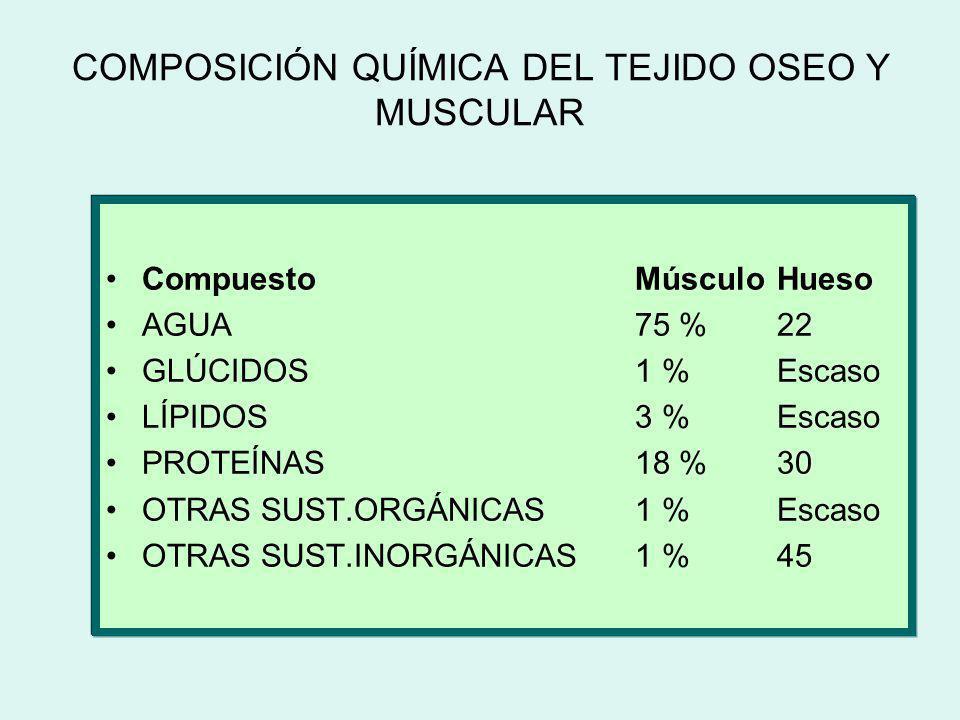 COMPOSICIÓN QUÍMICA DEL TEJIDO OSEO Y MUSCULAR