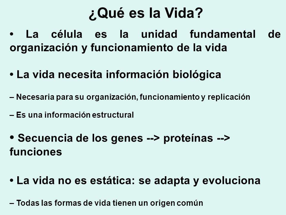 ¿Qué es la Vida • La célula es la unidad fundamental de organización y funcionamiento de la vida. • La vida necesita información biológica.