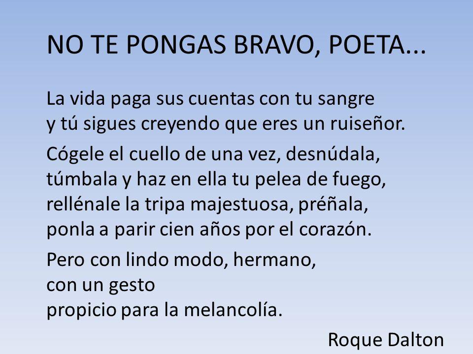 NO TE PONGAS BRAVO, POETA...
