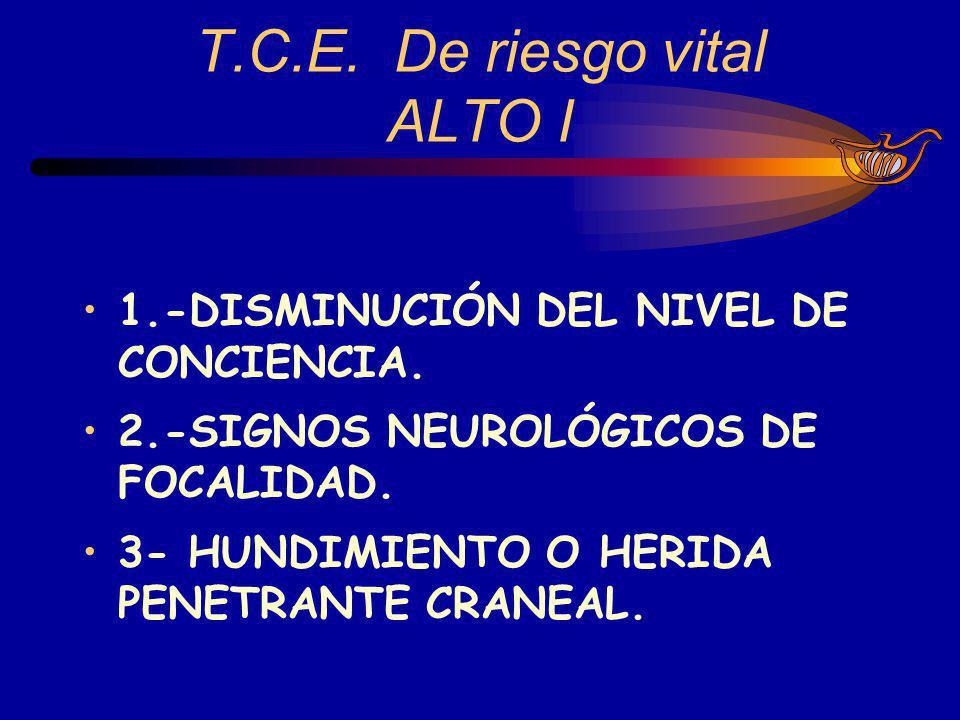 T.C.E. De riesgo vital ALTO I