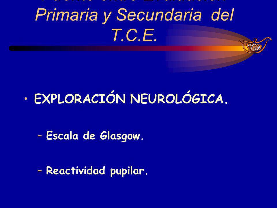 Puente entre Evaluación Primaria y Secundaria del T.C.E.