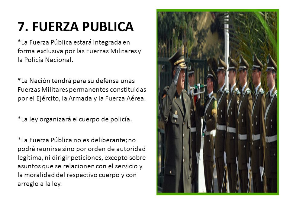 7. FUERZA PUBLICA *La Fuerza Pública estará integrada en forma exclusiva por las Fuerzas Militares y la Policía Nacional.