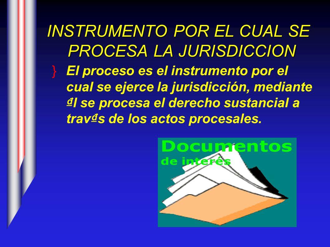 INSTRUMENTO POR EL CUAL SE PROCESA LA JURISDICCION