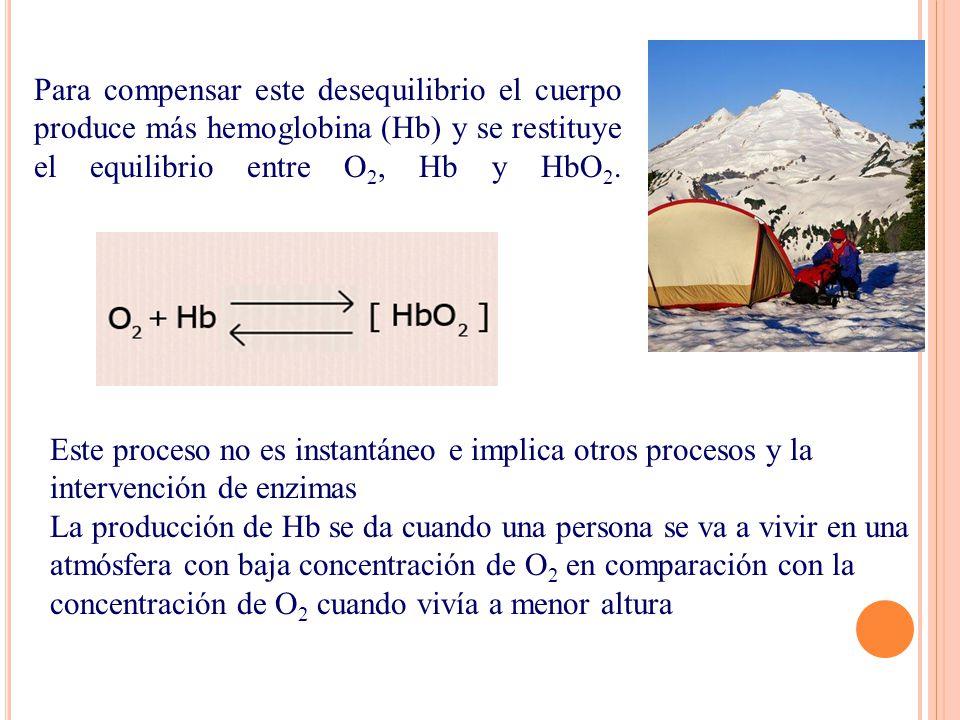 Para compensar este desequilibrio el cuerpo produce más hemoglobina (Hb) y se restituye el equilibrio entre O2, Hb y HbO2.