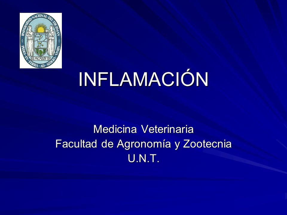 Medicina Veterinaria Facultad de Agronomía y Zootecnia U.N.T.