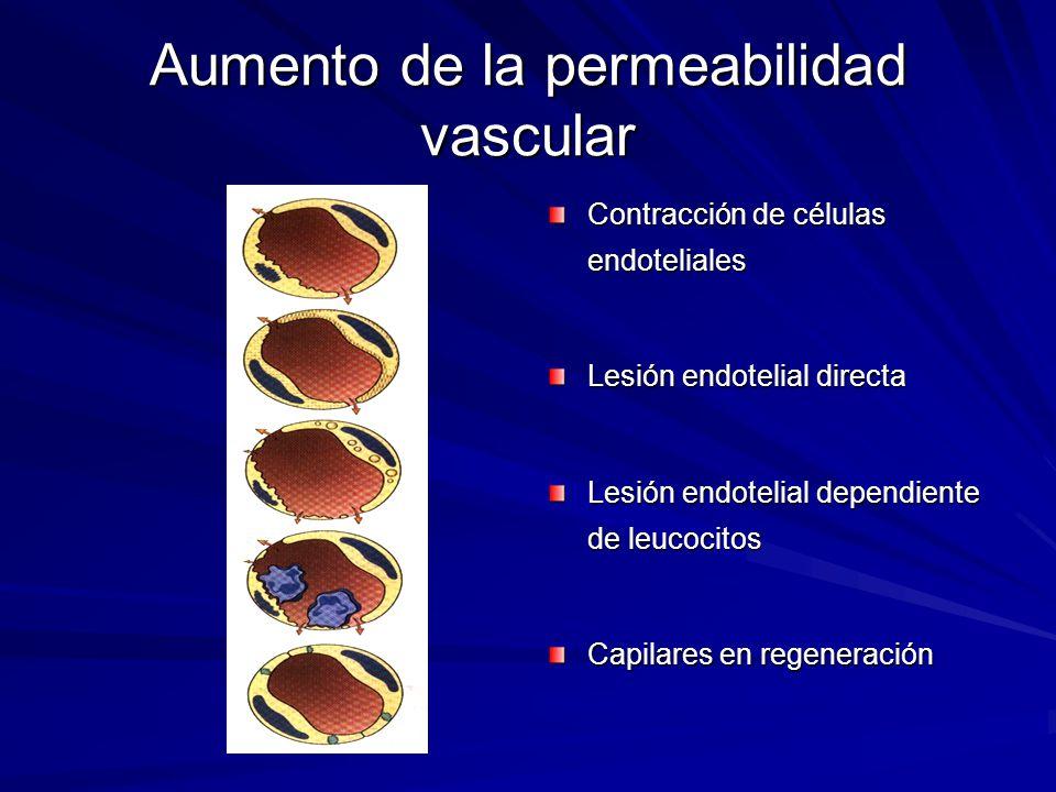 Aumento de la permeabilidad vascular