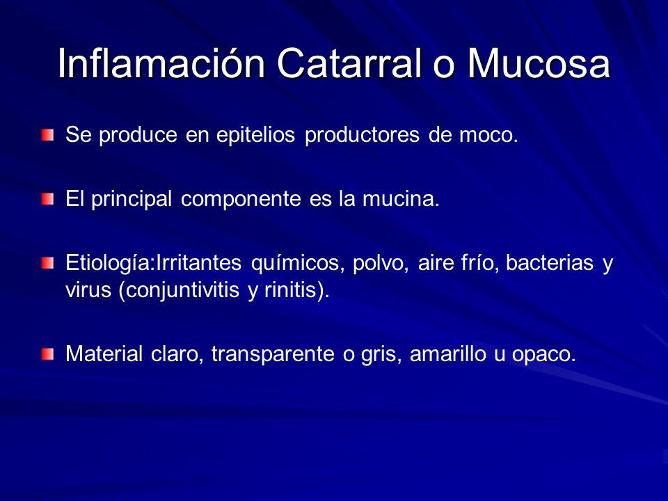 Inflamación Catarral o Mucosa