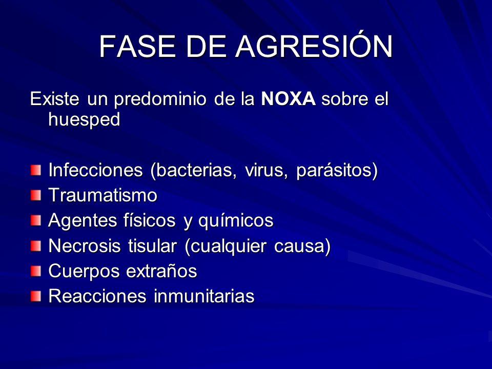 FASE DE AGRESIÓN Existe un predominio de la NOXA sobre el huesped