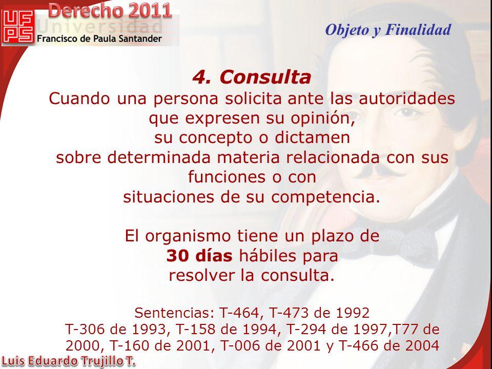 4. Consulta Objeto y Finalidad
