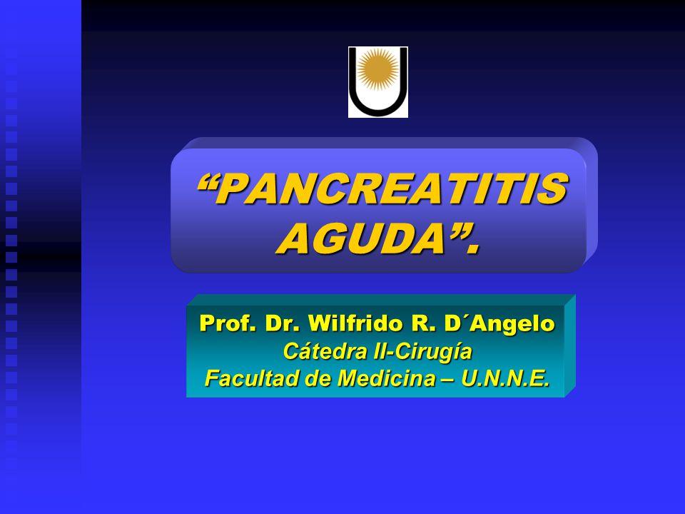 Facultad de Medicina – U.N.N.E.