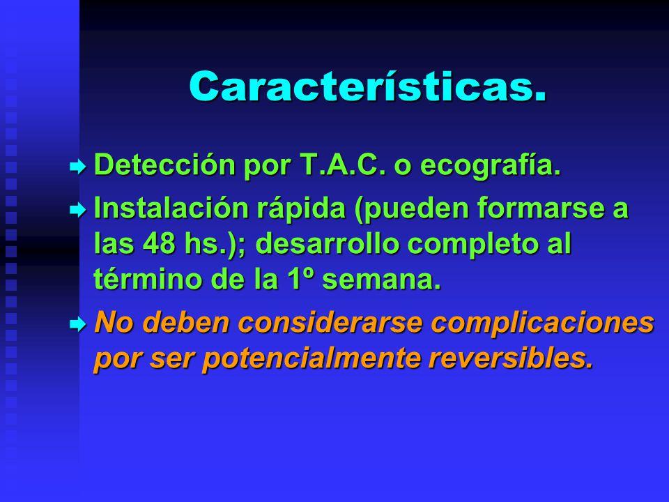 Características. Detección por T.A.C. o ecografía.
