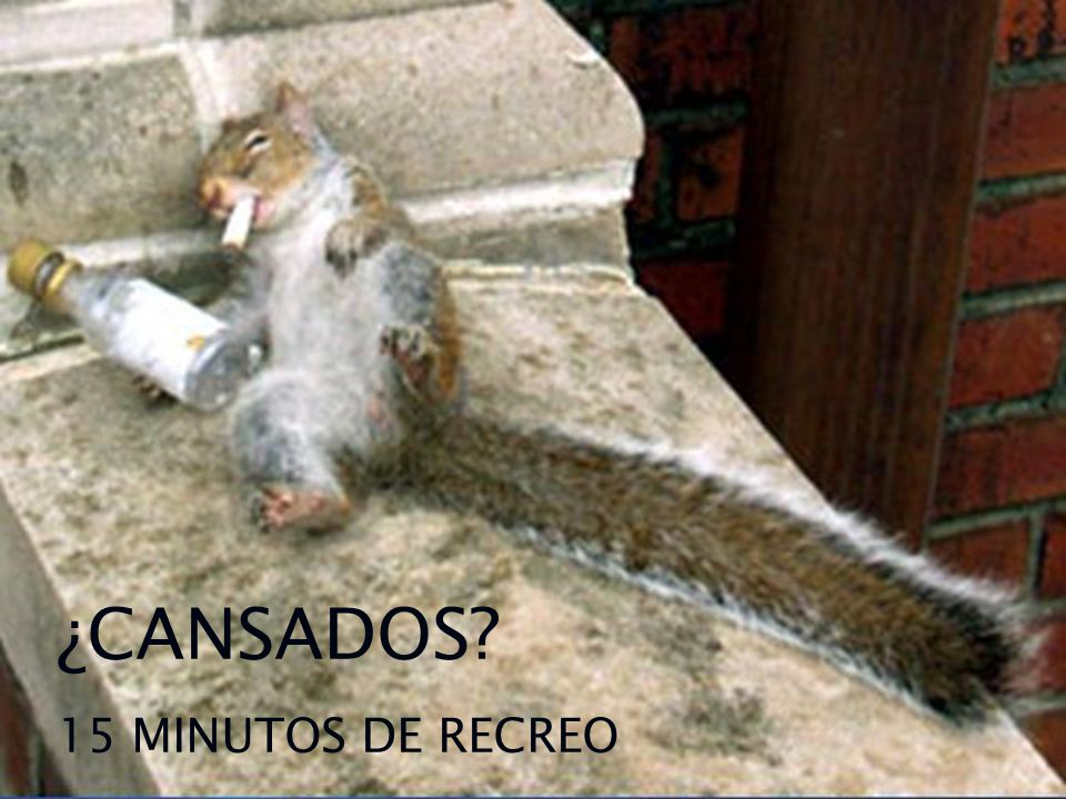 ¿CANSADOS 15 MINUTOS DE RECREO