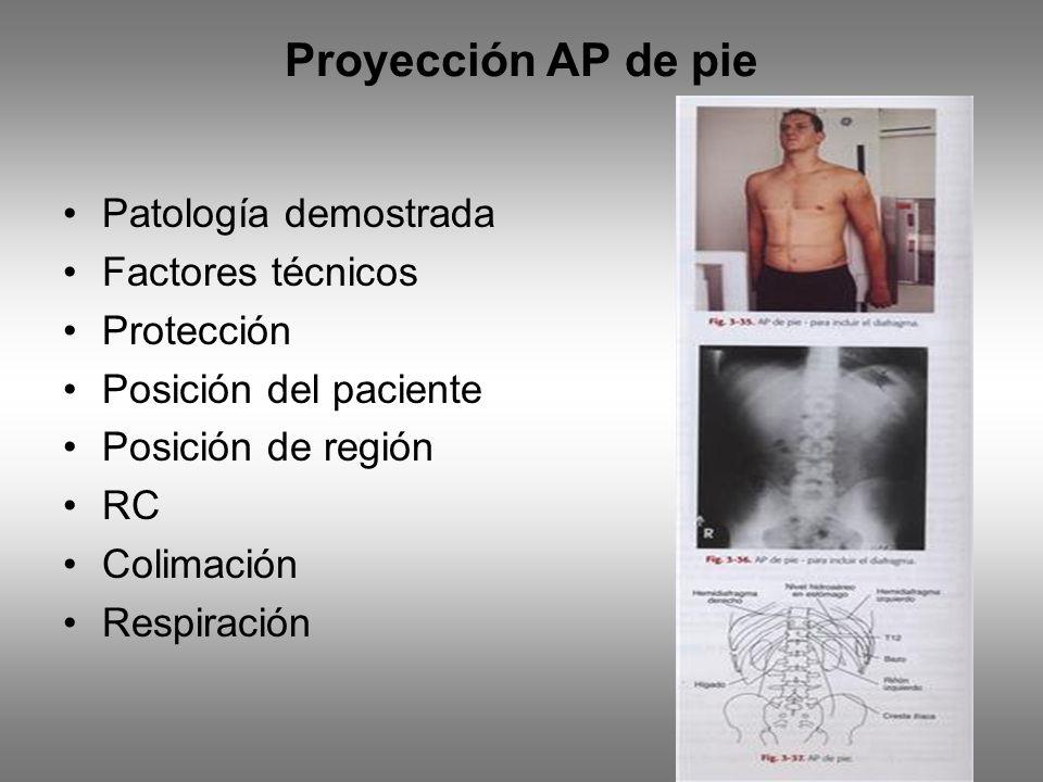 Proyección AP de pie Patología demostrada Factores técnicos Protección