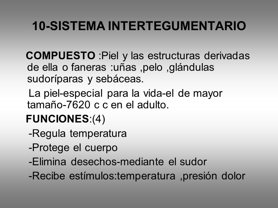 10-SISTEMA INTERTEGUMENTARIO
