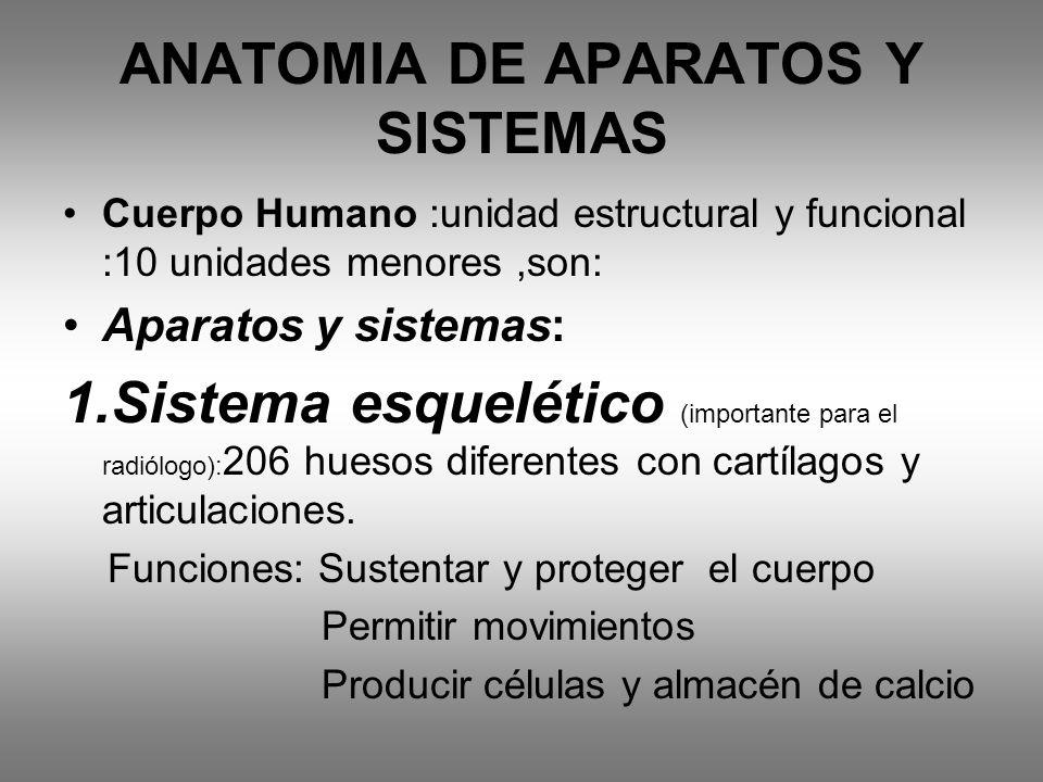 ANATOMIA DE APARATOS Y SISTEMAS