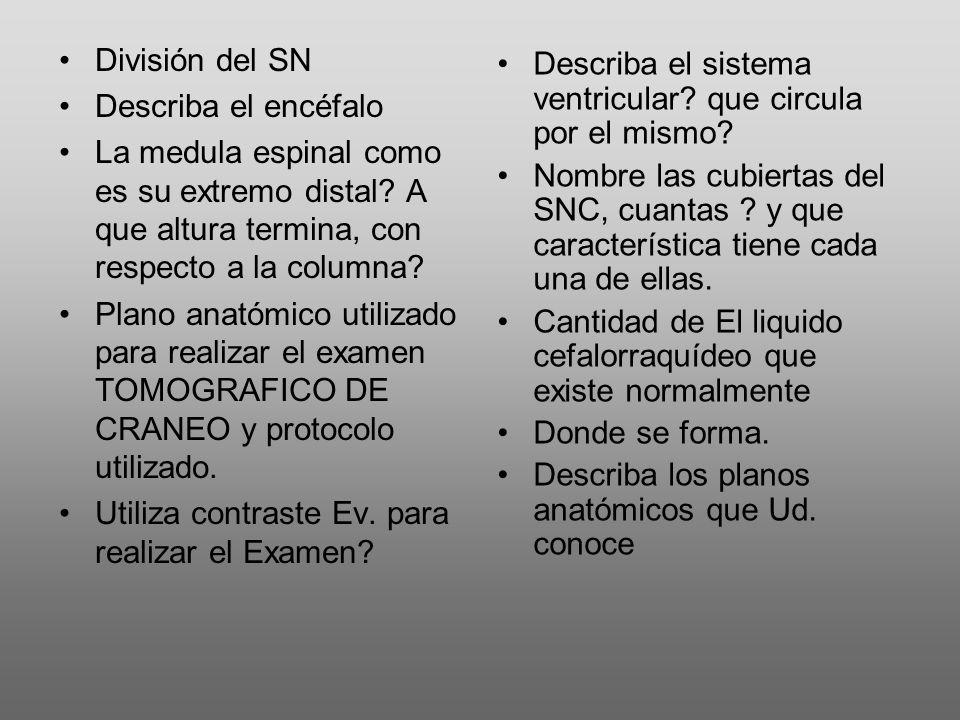 División del SN Describa el encéfalo. La medula espinal como es su extremo distal A que altura termina, con respecto a la columna
