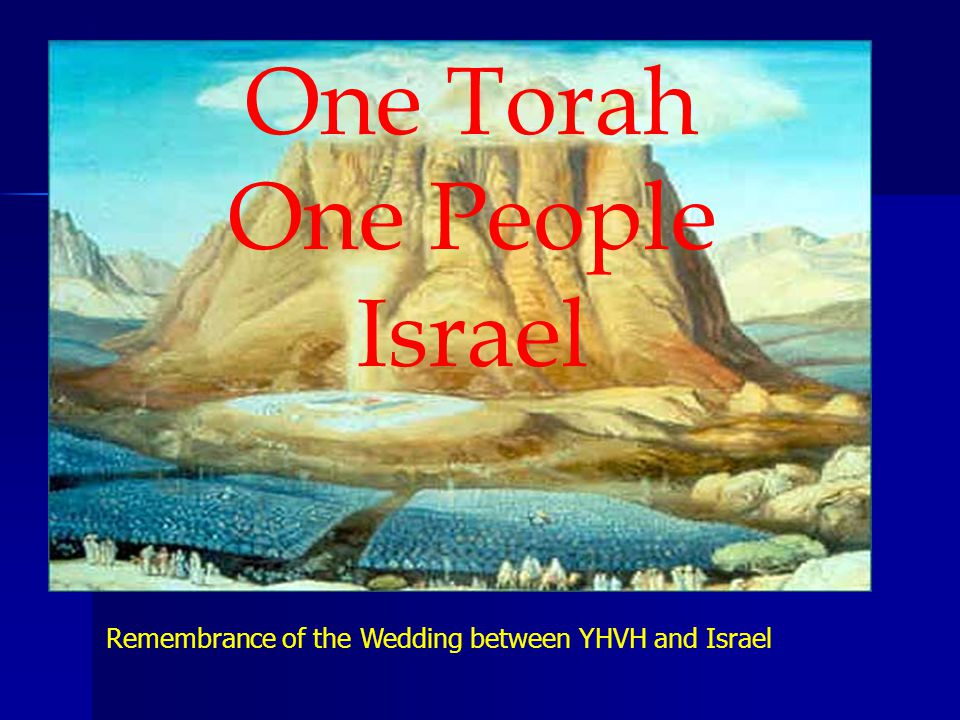 One Torah One People Israel