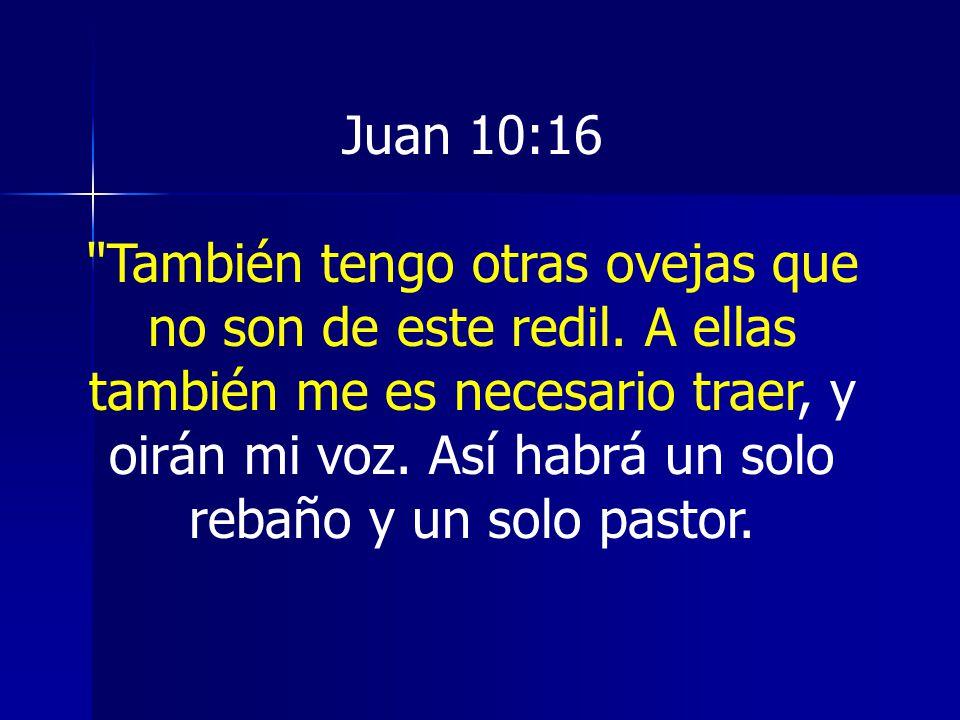 Juan 10:16