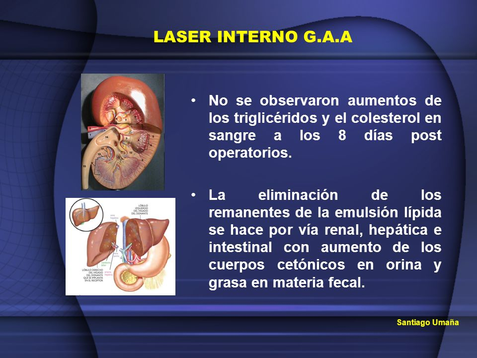 LASER INTERNO G.A.ANo se observaron aumentos de los triglicéridos y el colesterol en sangre a los 8 días post operatorios.